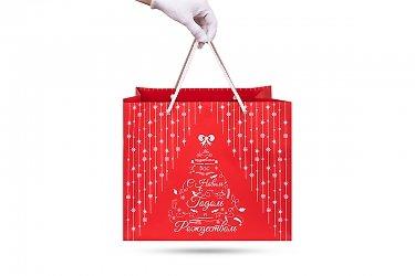 дизайнерские пакеты на новый год