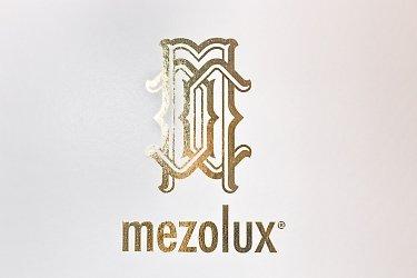 изготовление коробок с золотым логотипом
