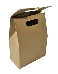 Коробка-пакет из экологичных материалов