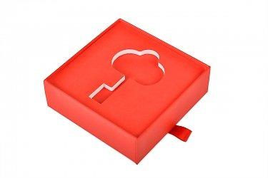 заказать коробку с индивидуальным ложементом