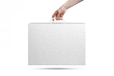 подарочные чемоданы и портфели для образцов
